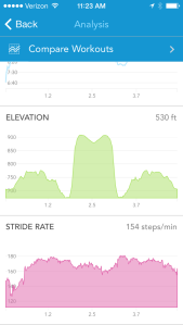 stride rate on RunKeeper