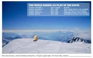 2008 Ski Series Poster