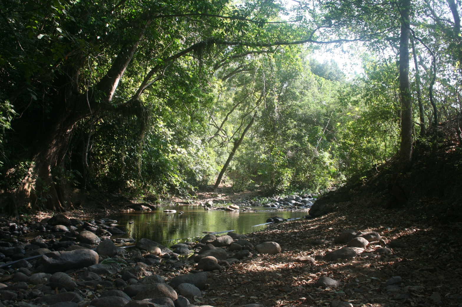 lagunillas river