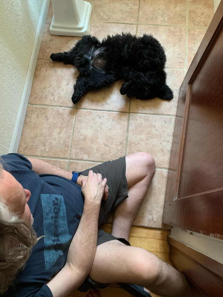 Man and dog on tile floor